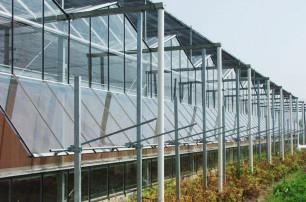 連棟溫室大棚澆水需要具備的原則